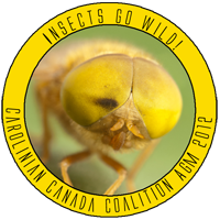 Insects go Wild!  Carolinian Canada Coalition AGM 2012