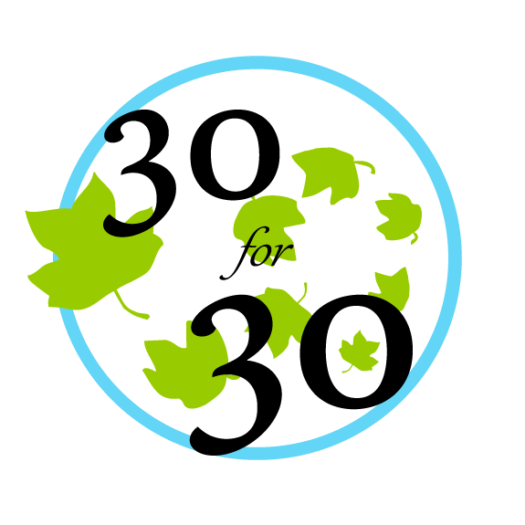 30/30 Badge Logo