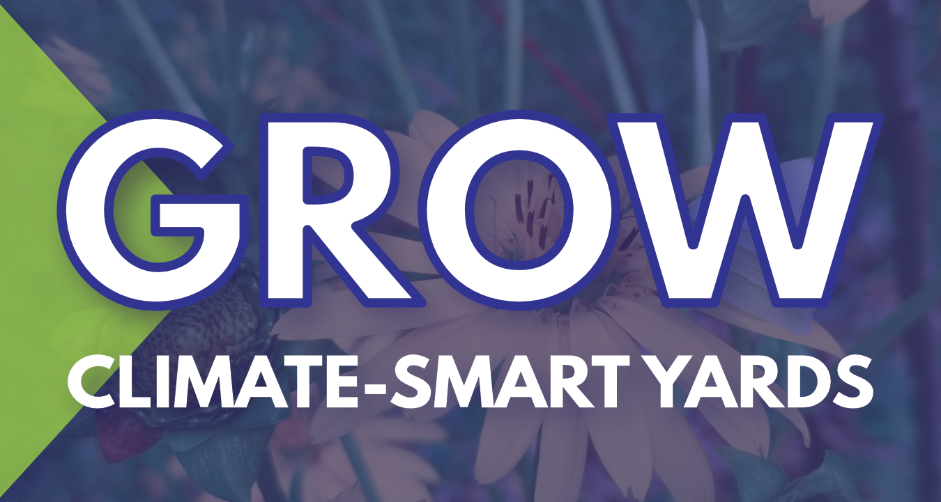 Grow climate-smart yards