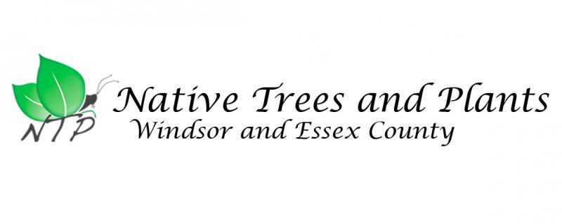 Native Trees and Plants Windsor and Essex County