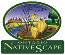 Ontario Native Scapes