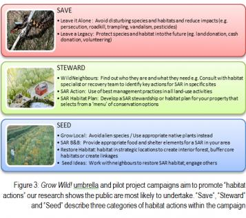 "Figure 3: Grow Wild! umbrella and pilot project campaigns aim to promote ""habitat actions"" our research shows the public are most likely to undertake. ""Save"", ""Steward"" and ""Seed"" describe three categories of habitat actions within the campaign"