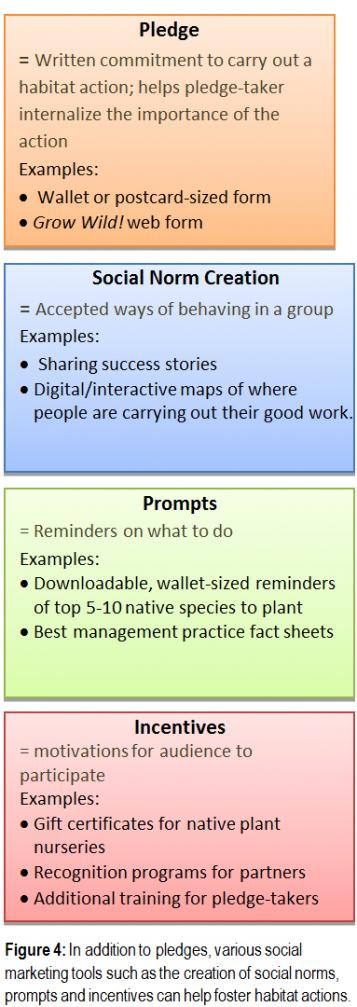 Figure 4: In addition to pledges, various social marketing tools such as the creation of social norms, prompts and incentives can help foster habitat actions.
