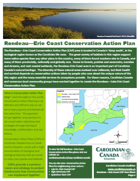 Rondeau CAP Fact sheet