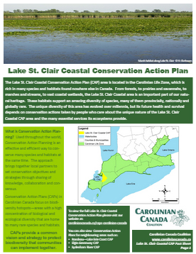 Lake St. Clair CAP Fact sheet
