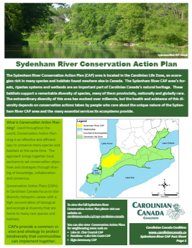Sydenham River CAP Fact sheet