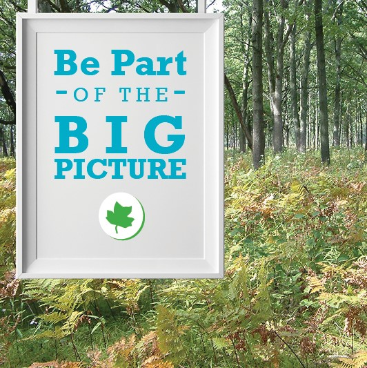 Be Part of the Big Picture