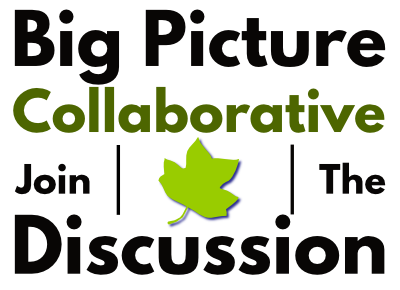 Big Picture Collaborative: Join the Discussion