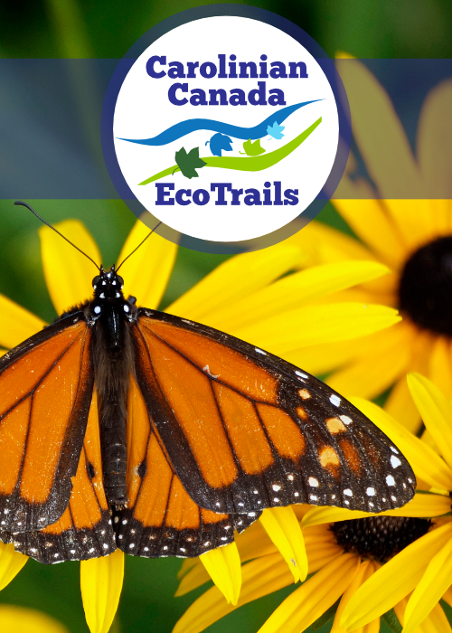 Carolinian Canada Eco Trails