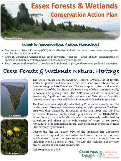Essex Forests and Wetlands CAP fact sheet