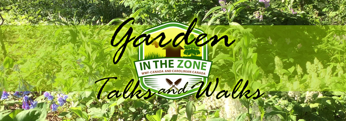 In The Zone Garden Talks and Walks