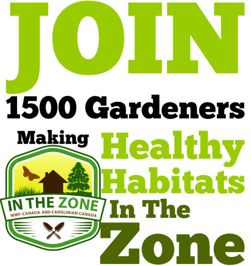 Join 1500 Gardeners making healthy habitats