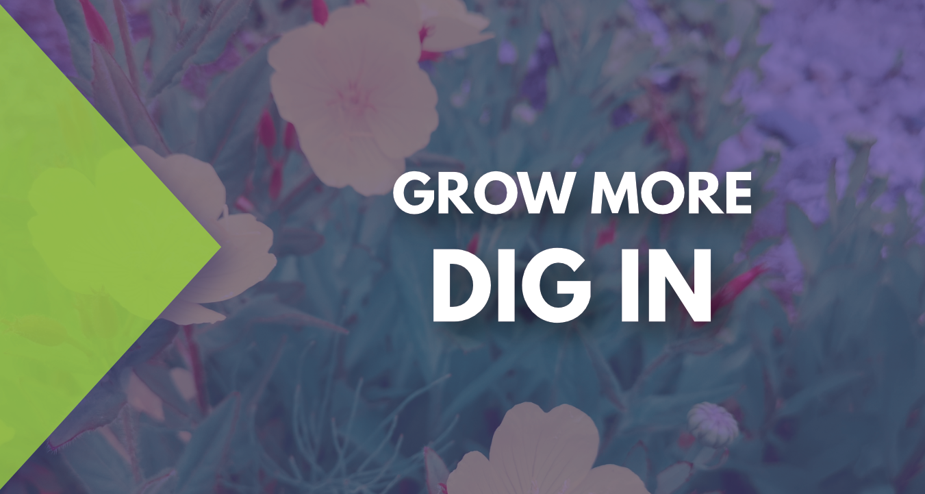 Grow More - Dig In