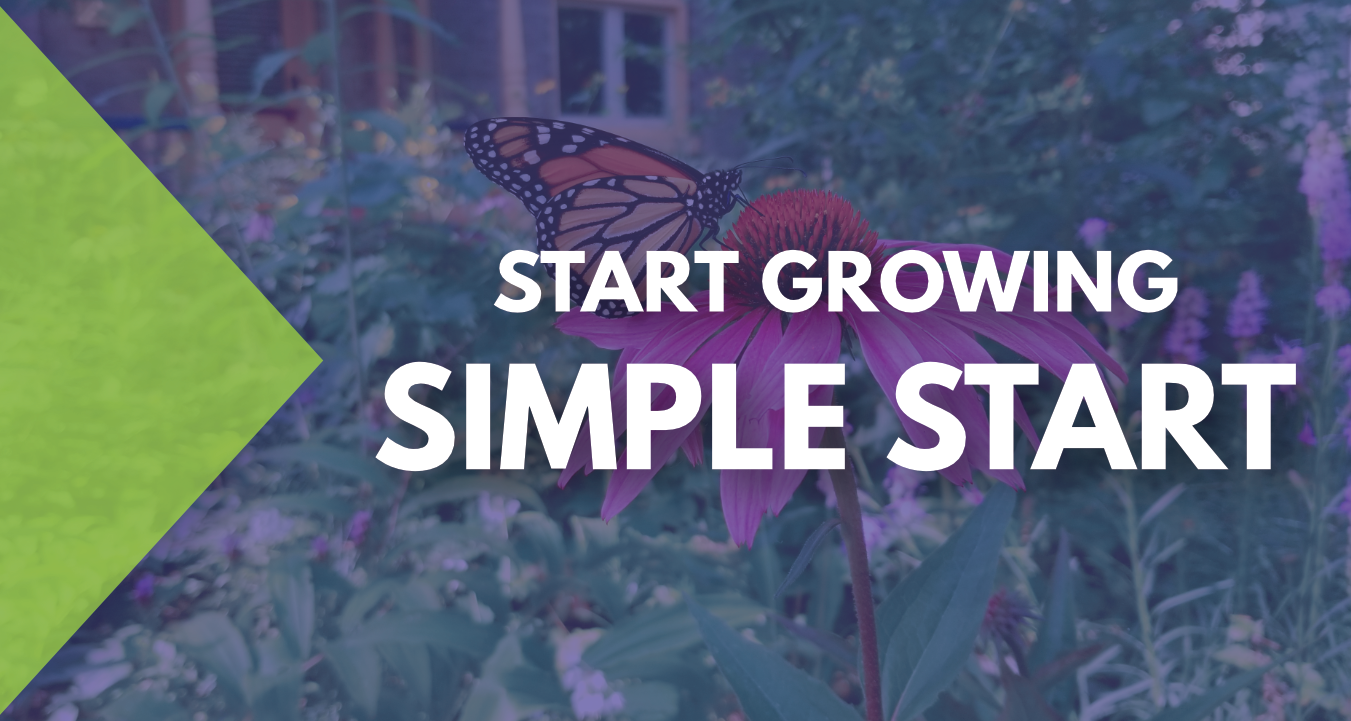 Get Started - Simple Start