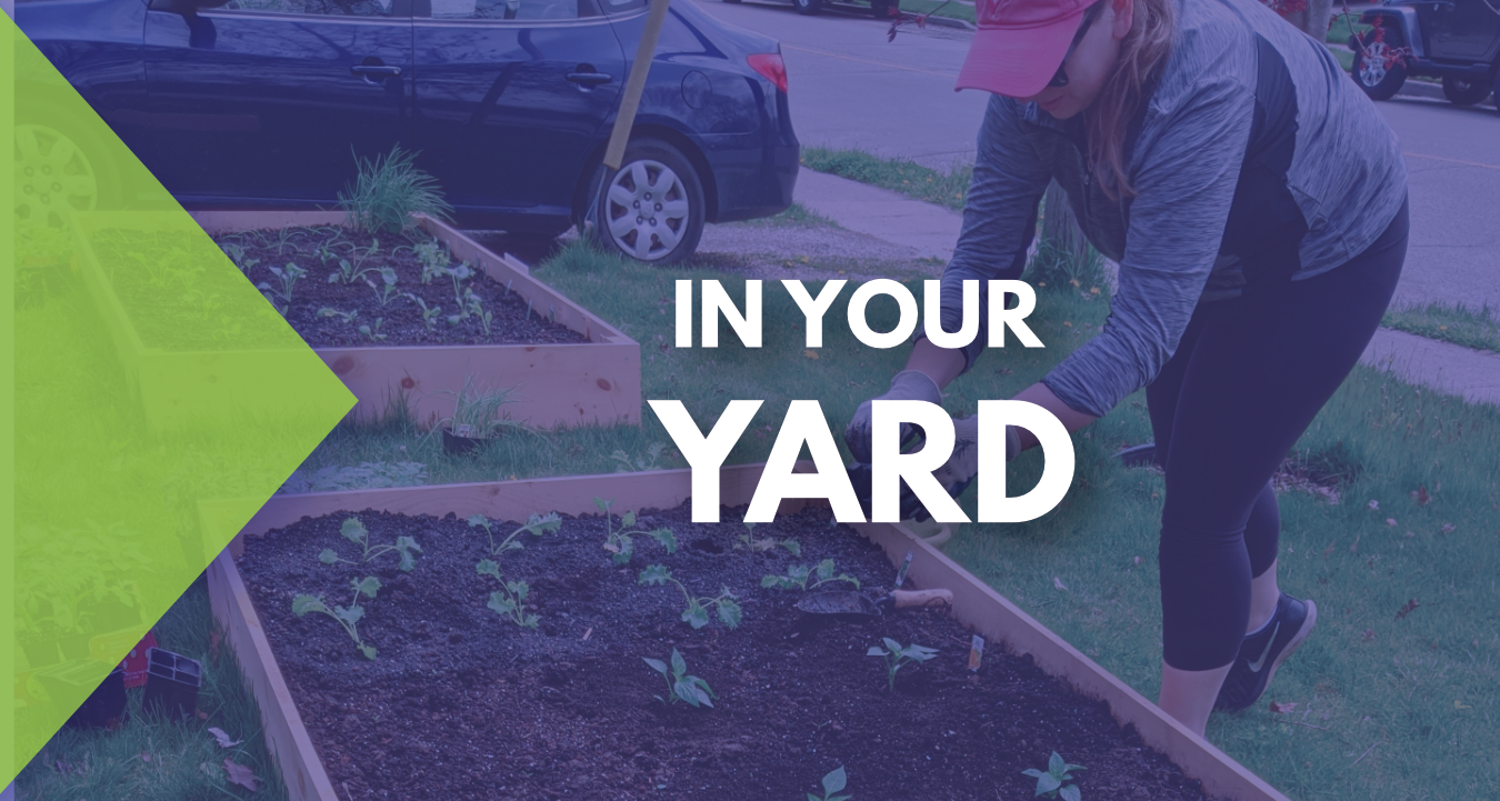 In Your Yard