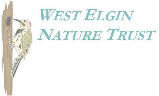West Elgin Nature Trust Logo