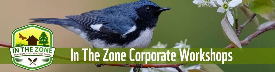 In The Zone Corporate Workshops