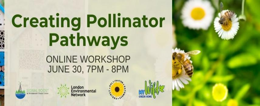 "A photo of wooden bee hotels and a photo of bees on flowers. Overlayed on these images is text that reads ""Creating Pollinator Pathways, June 30 7pm-8pm, Online Workshop"""