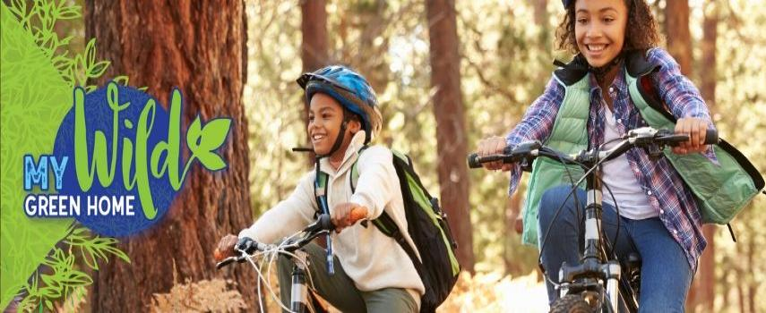 Two kids are riding bikes on a trail with a parent following closely behind.