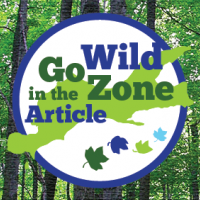 Go Wild in the Zone Article
