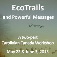 EcoTrails and Powerful Messages (workshop Bronwen Buck, Image, Mark Helm)
