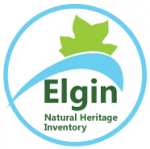 Link to Elgin Natural Heritage Inventory