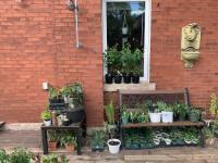 Community Planting Grants