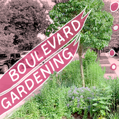 Boulevard Gardening teaser image - lush streetside garden with pink and white text reading 'Boulevard Gardens'